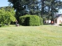 Reprise de l'entretien des espaces verts de la commune