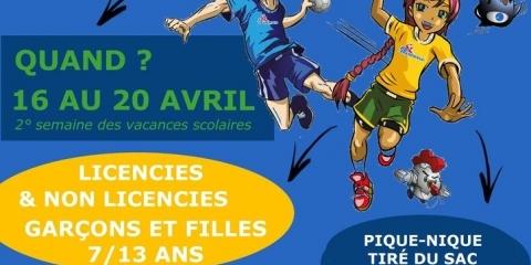 Stage handball et multisports